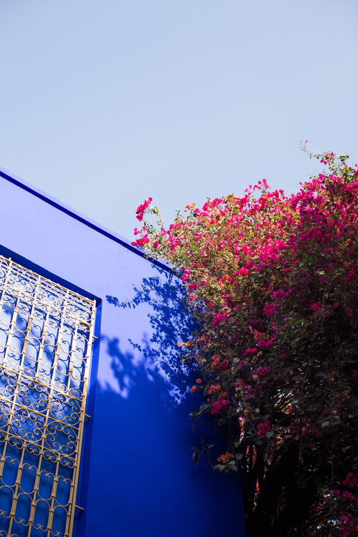 Marrakech - clairemenary.com-2931.jpg