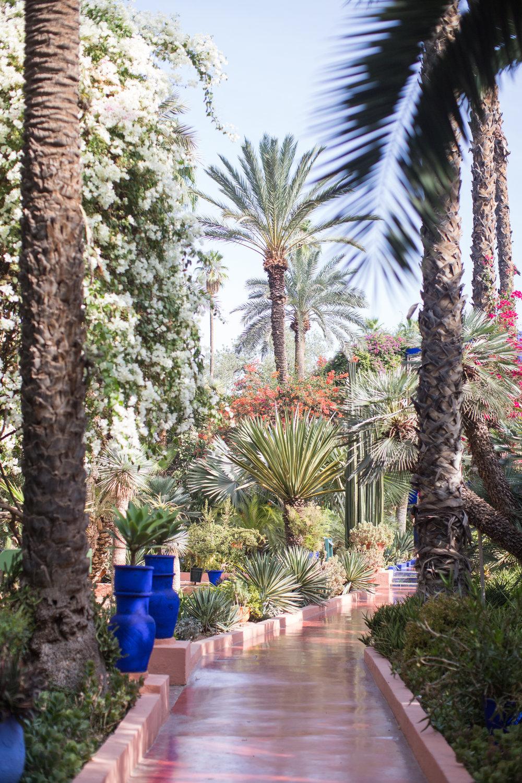 Marrakech - clairemenary.com-2975.jpg