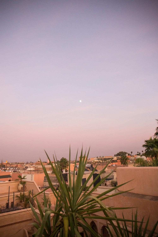 Marrakech - clairemenary.com-3265.jpg
