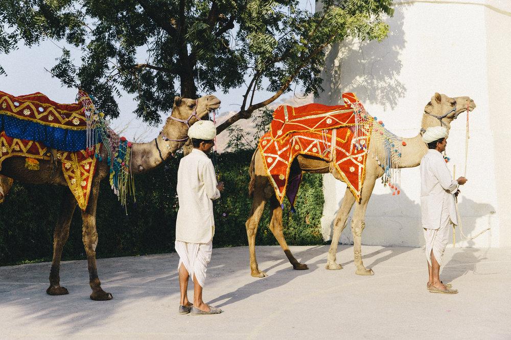 India-9848.jpg