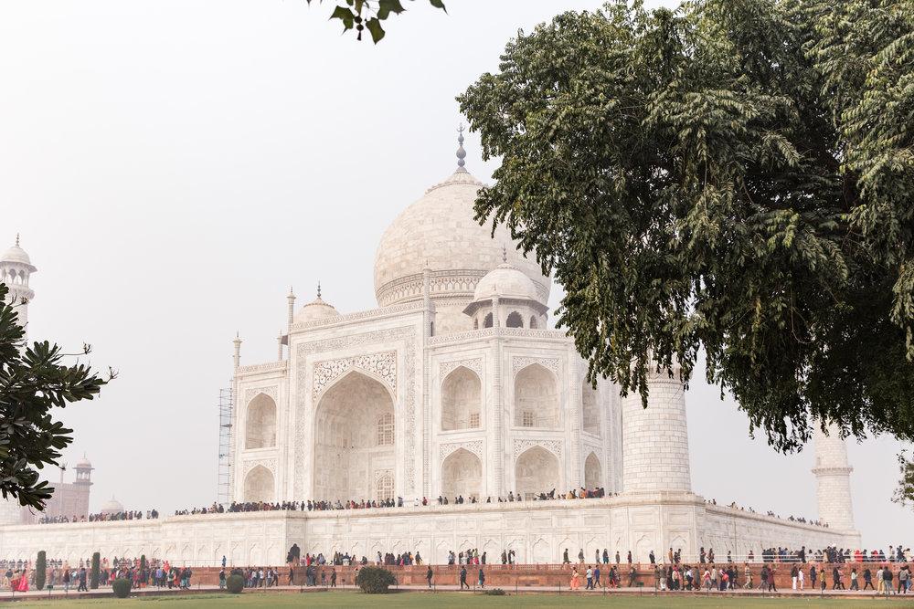 india-8691.jpg