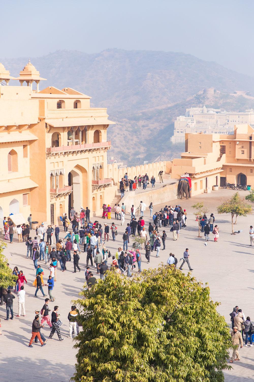 India-8815.jpg