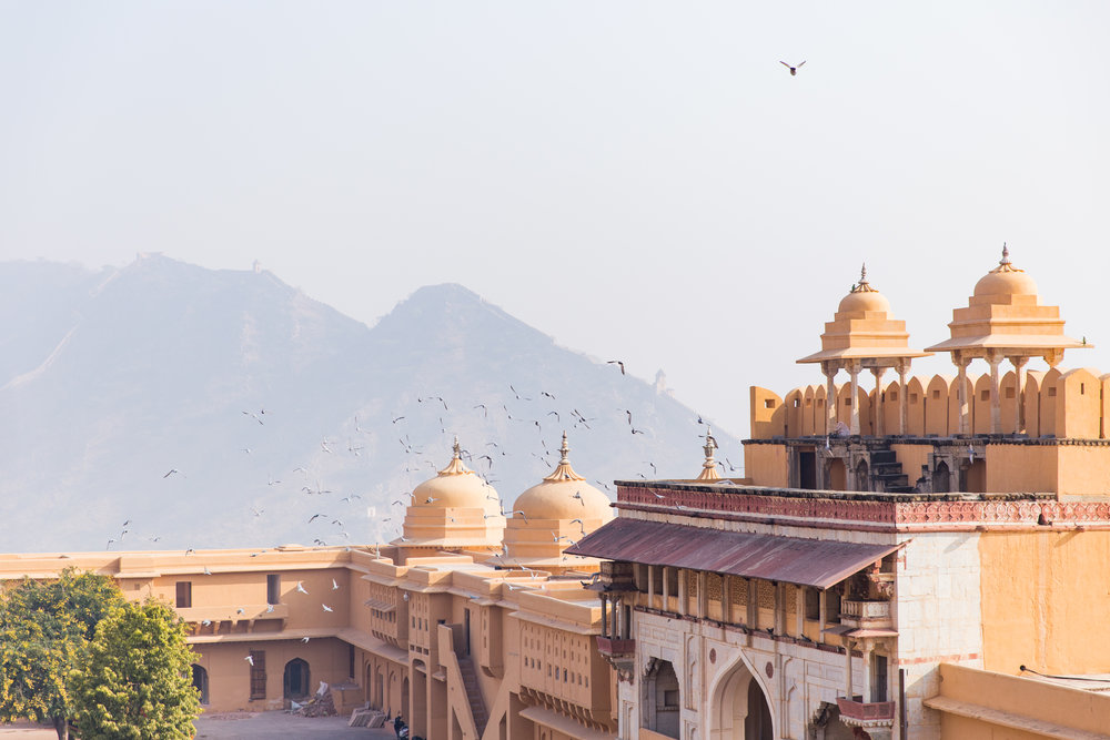 India-8816.jpg