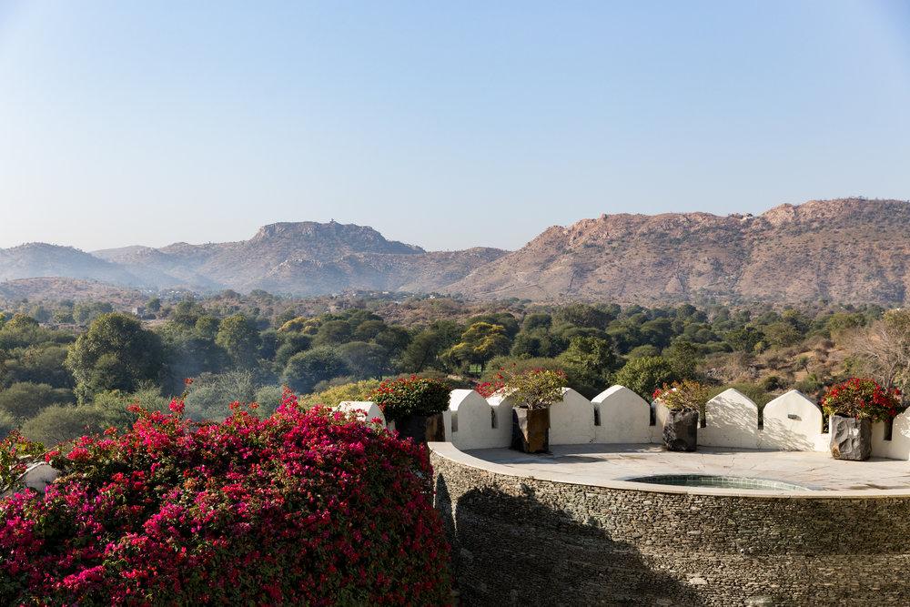 India-9485.jpg