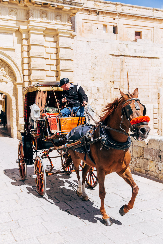 Malta-8526.jpg