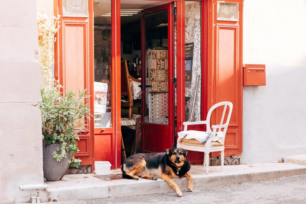 Provence-3133.jpg