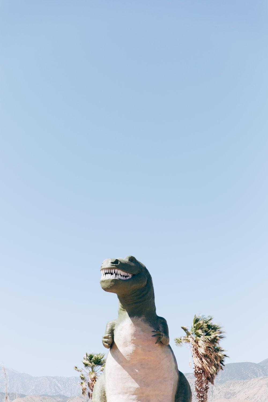 California-0161.jpg