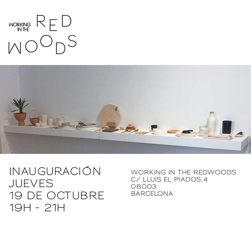 flyer_2017_inauguración.png
