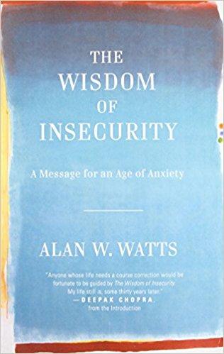 THE WISDOM OF INSECURITY   Amazon INDIA