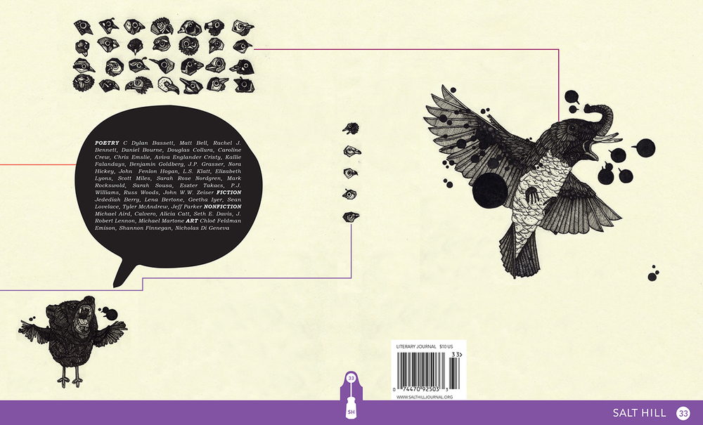 Salt Hill  33, Cover Design