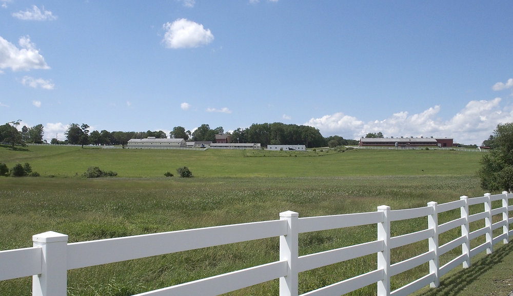 View across Horse Barn Hill from the UConn Dairy Bar in Storrs, CT