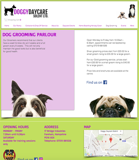 alt text doggy daycare solent website