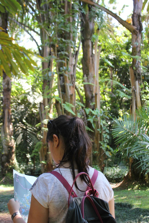 Laura arrasando no nosso mapeamento ;)