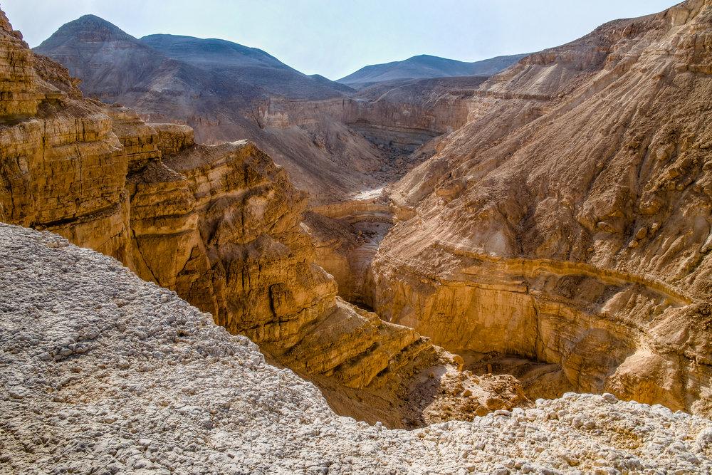 my desert site-4.jpg