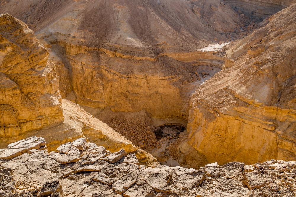 my desert site-5717.jpg