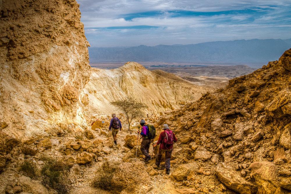my desert site--9.jpg