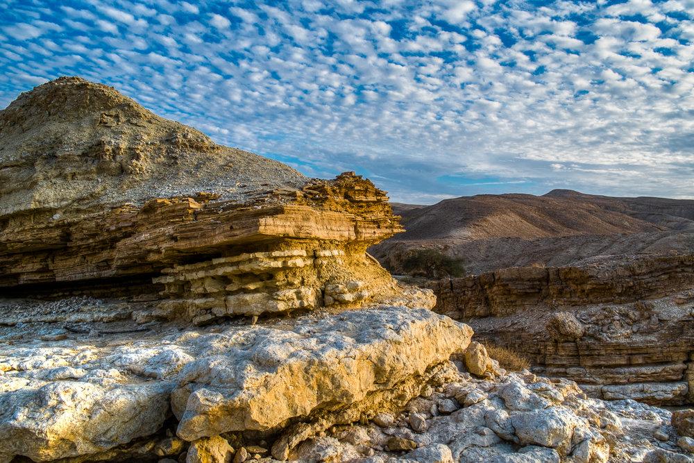 my desert site--15.jpg