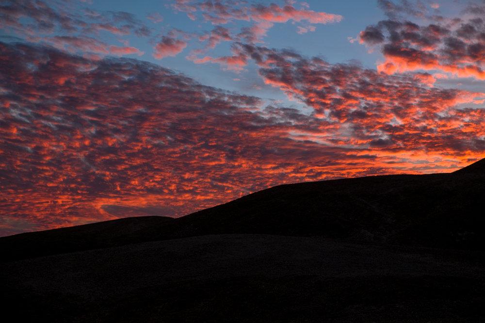 my desert site-7093-2.jpg