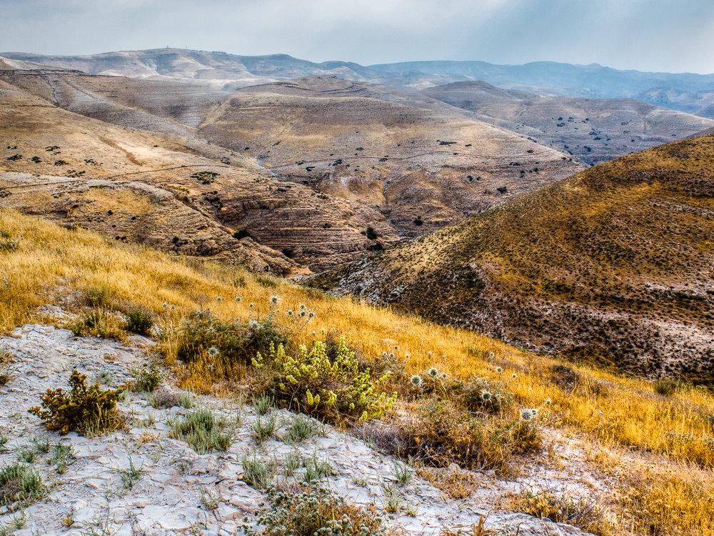 my desert site--50.jpg