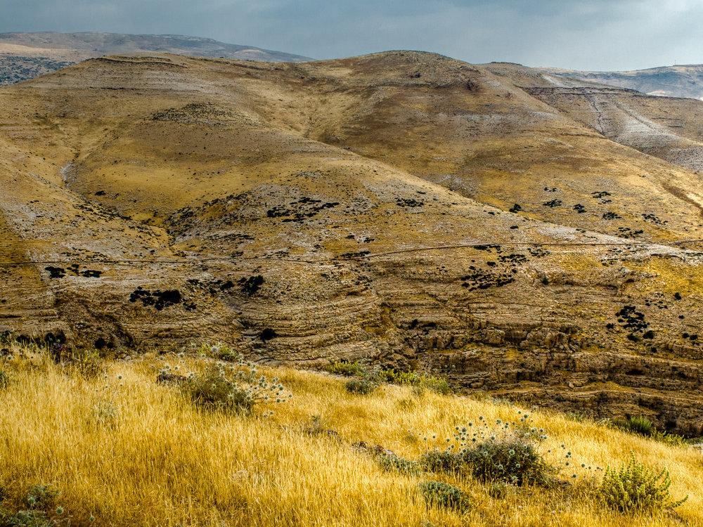my desert site--51.jpg