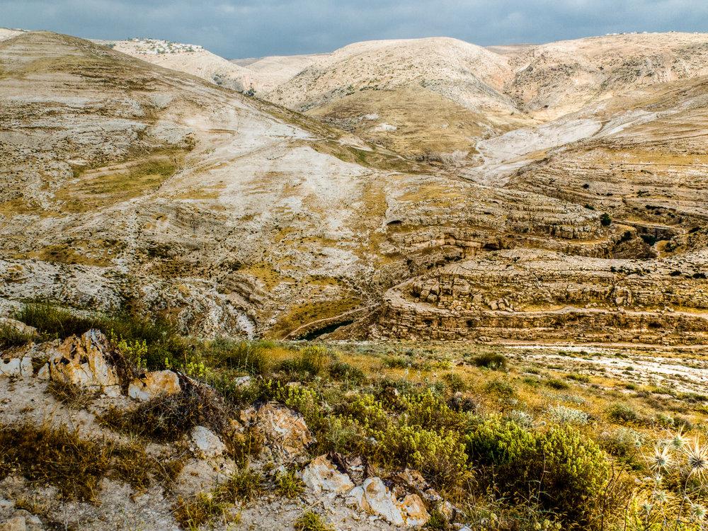 my desert site--52.jpg