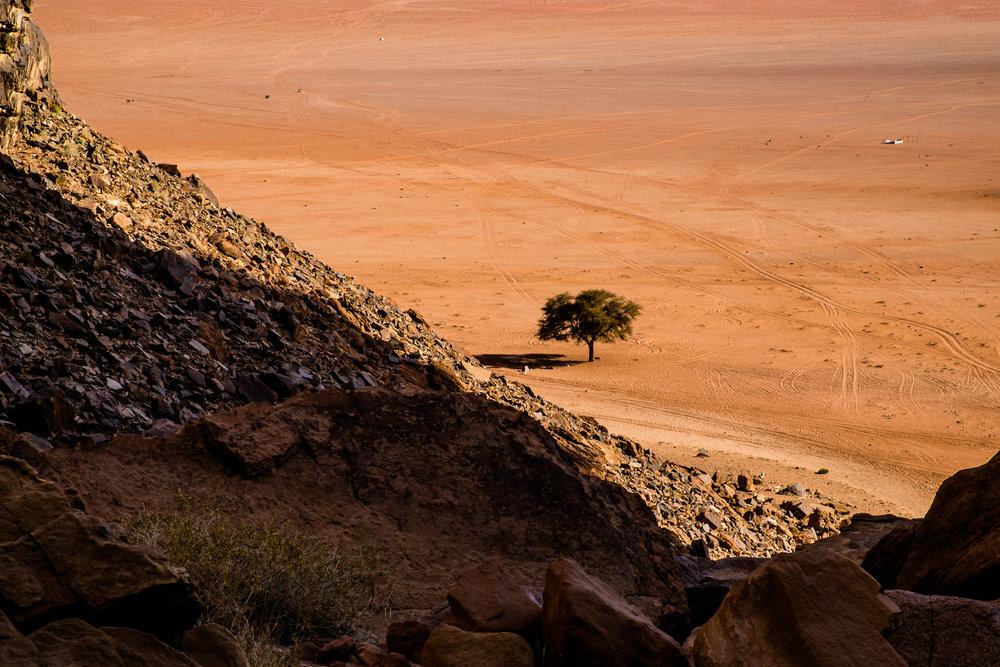my desert site-9068.jpg