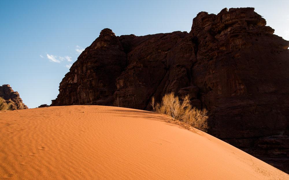 my desert site-9359.jpg