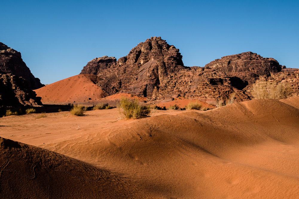 my desert site-9397.jpg