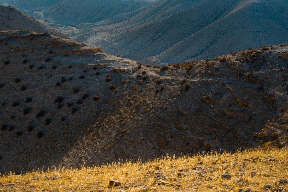 my desert site-0270.jpg