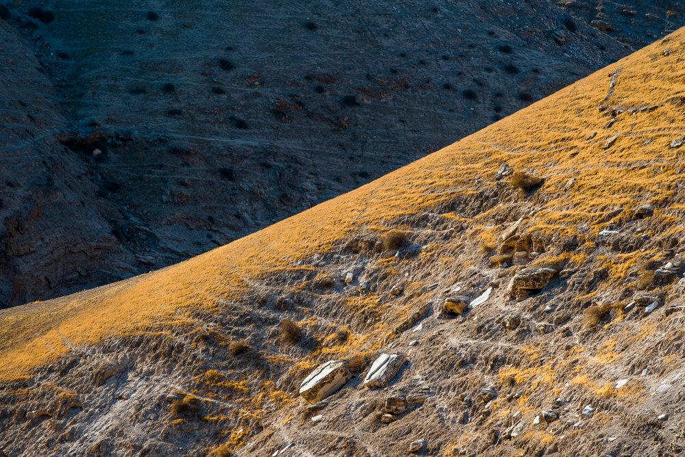 my desert site-0283.jpg