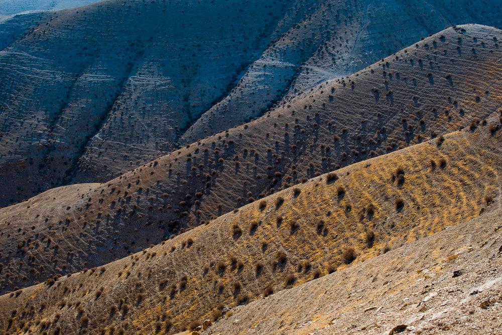 my desert site-0318.jpg