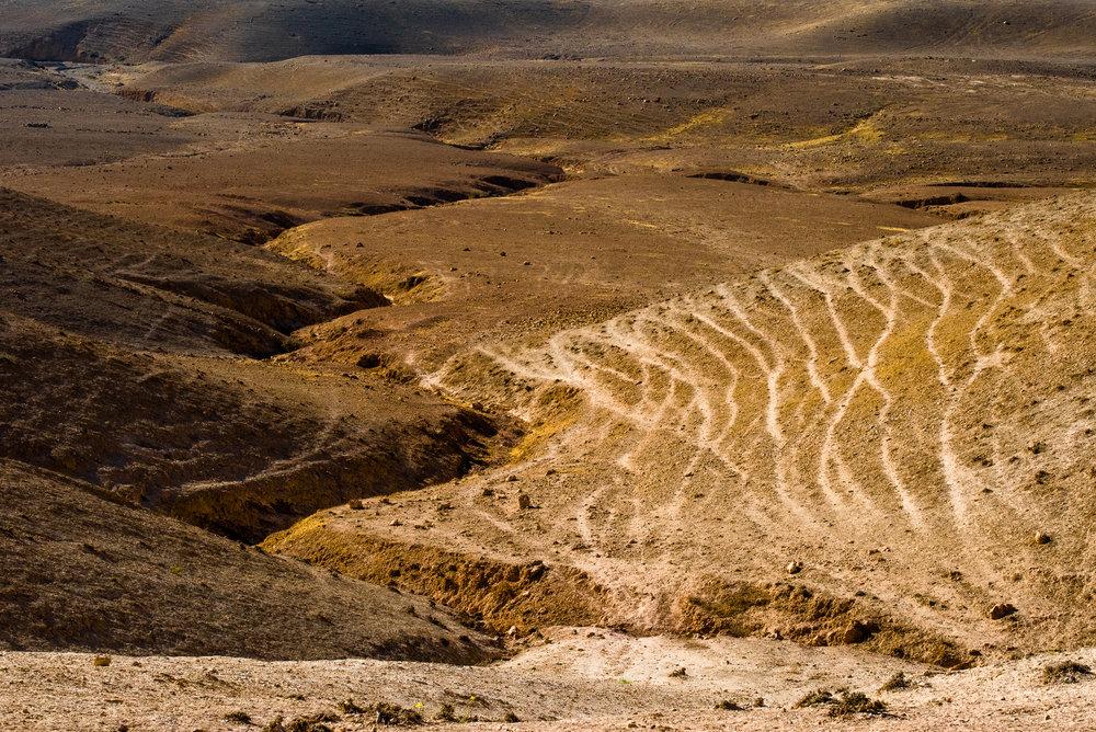 my desert site-0492.jpg