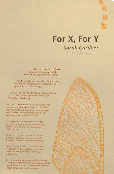 """""""For X, For Y"""" Sarah Gardner"""