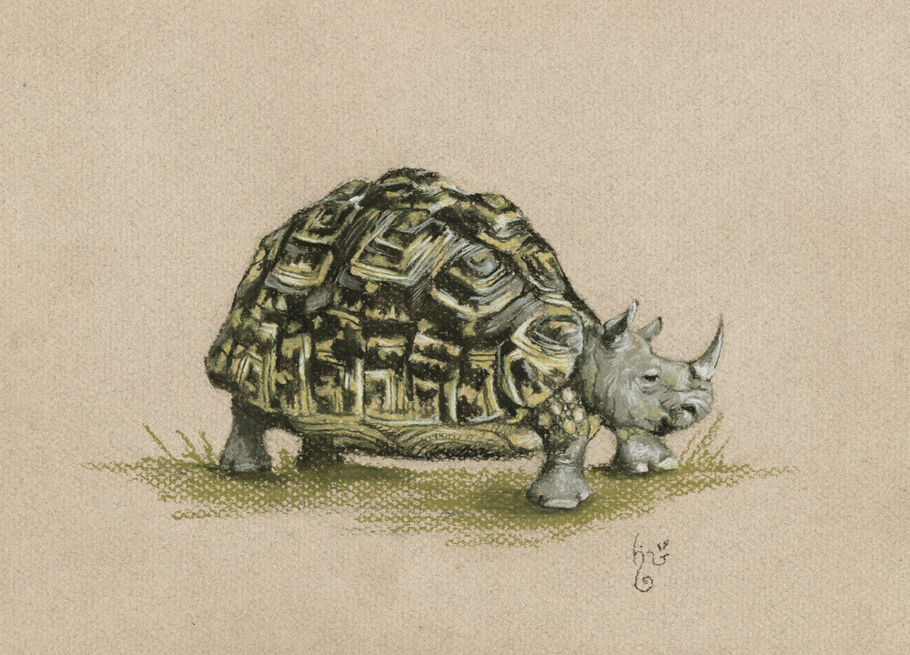 Leopard Tortoise-Rhino