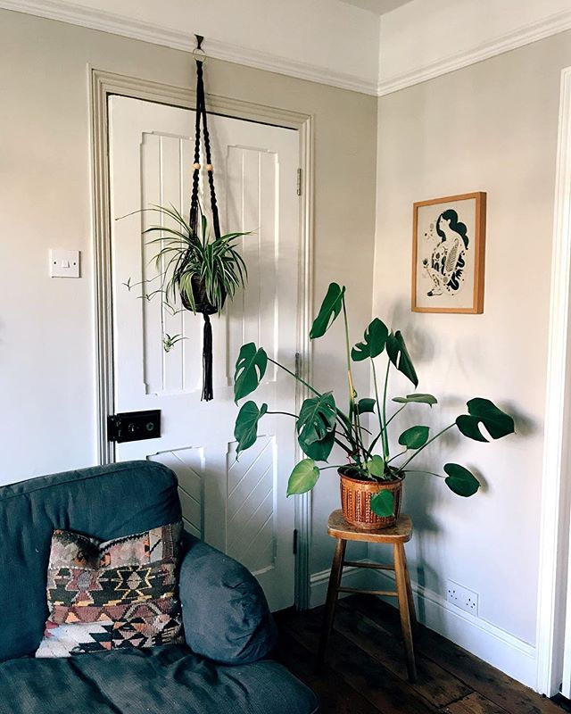 One of my favourite corners in our home 🌿  We stalled on our renovations the last month or so, for a lot of reasons but mostly because I think we were craving a little time to regroup and make a plan for the things we wanted to do next. We have a lot we still want to get done before the end of the year, including ripping out our attic bathroom, finishing the living room and the music room. There's so many decisions to be made, and sometimes I need a break from choosing tiles and paint colours.  My in laws are staying this weekend, so we have a huge list of jobs we need their help with. Can't wait to see some things progress again, I'm ready to make some more decisions! #ourhitchinhome