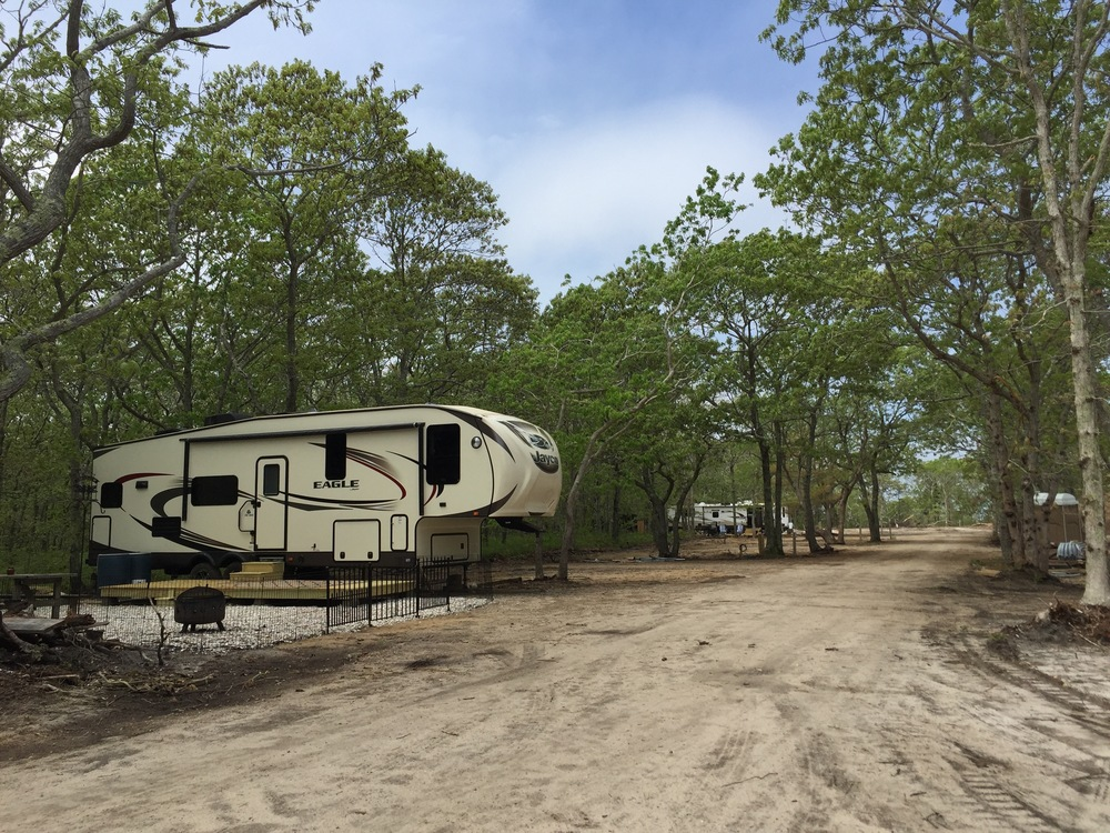 Horton's Campground is being converted from wooded primitive tent sites into an RV Park with hookups for electric, water, sewer, and cable TV.