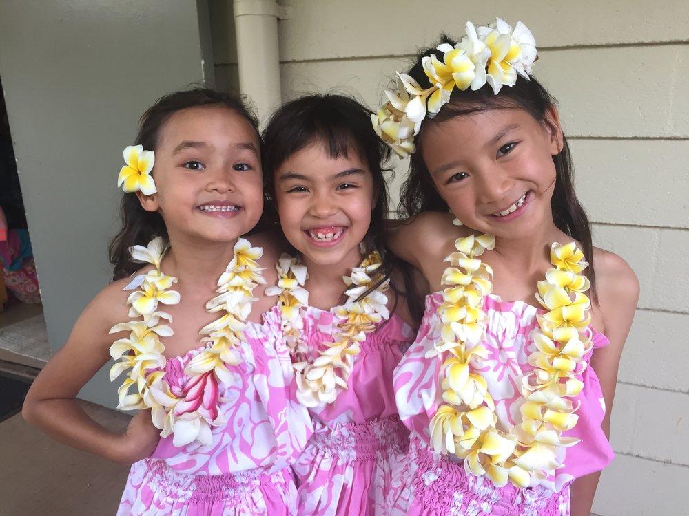 We Live Aloha