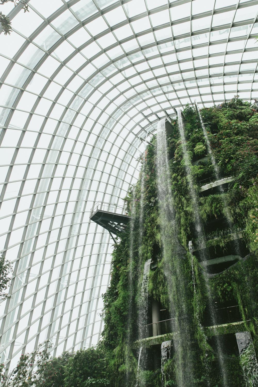 #AlohaSoutheastAsia_Singapore-313.jpg