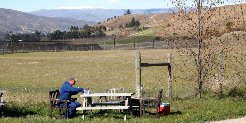 Vineyard worker having lunch on a cool spring day at Burn Cottage. Central Otago, NZ