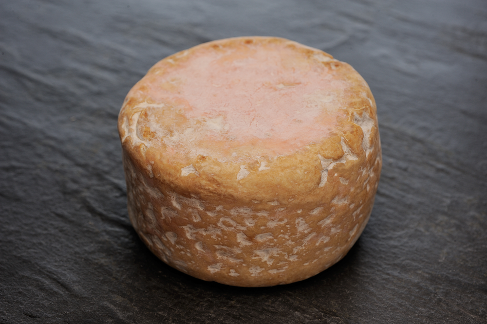 Red Cat ~ raw cow's milk ~ This washed rind announces itself with an assertive aroma that will lure in the stinky cheese lover in you. Come for the funky fragrance, stay for the lush, velvety texture and beefy barnyard notes. Serve with your favorite pale ale or farmhouse saison, or a fruit-forward wine.