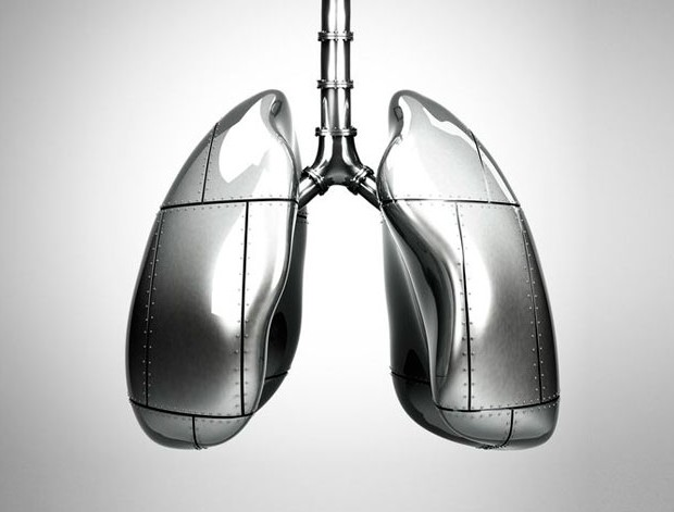 lungs__square.jpg