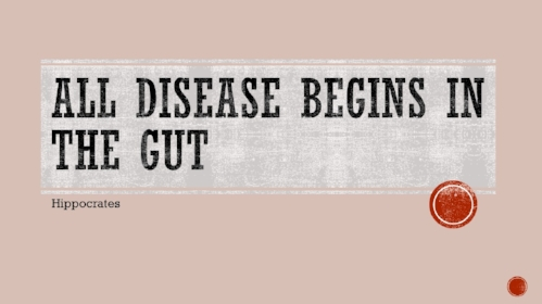 All Disease Begins in the GUT.jpg