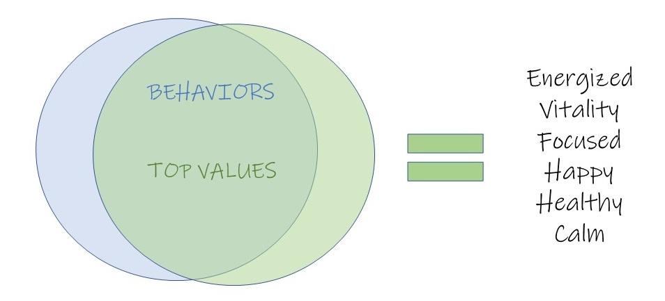 values and behaviors