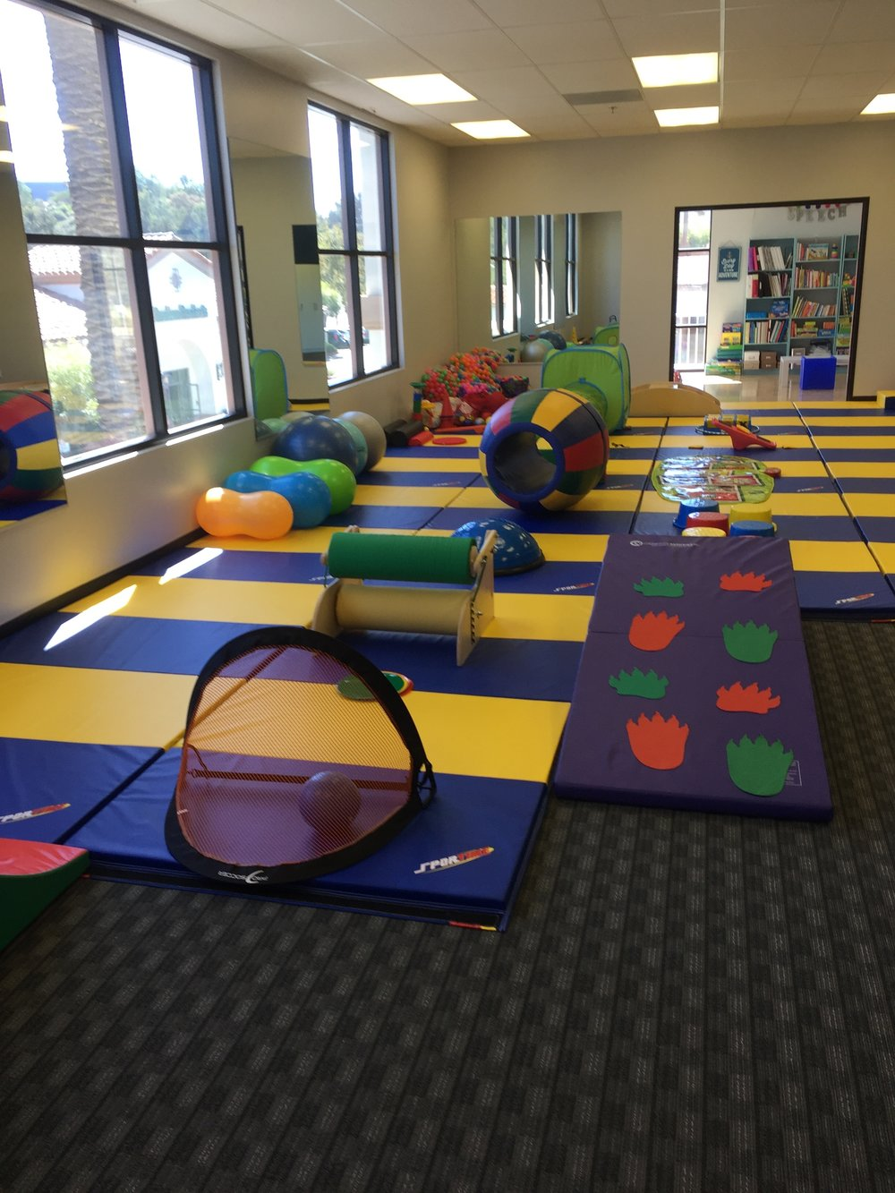 Equipment pediatric physical therapy - Therapy Gym Jpg