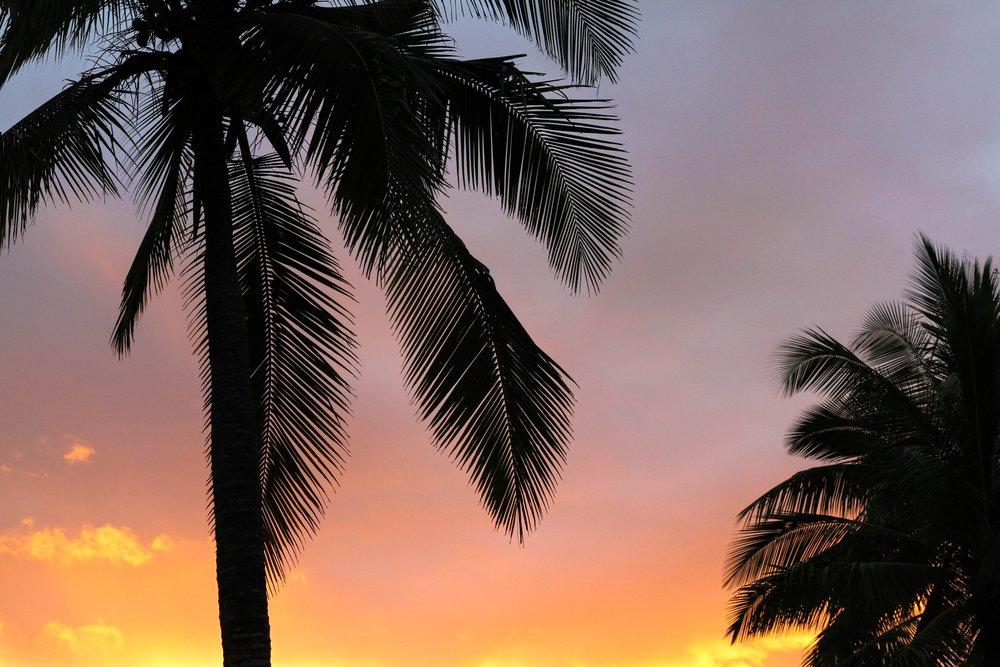 Trip itinerary - MILESTONE MIND COSTA RICA RETREAT | MAY 2018