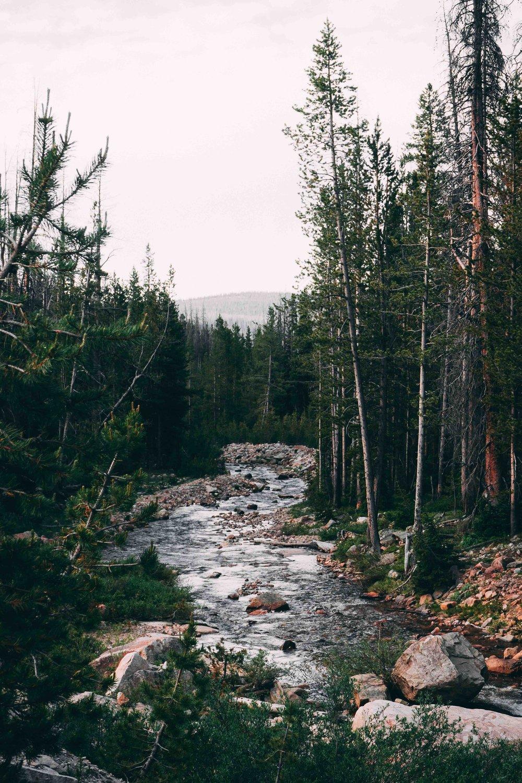 Trip itinerary - MOUNTAINSIDE MINDSET RETREAT   APRIL 2018