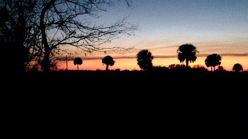 Florida Trail early days. 054.jpg