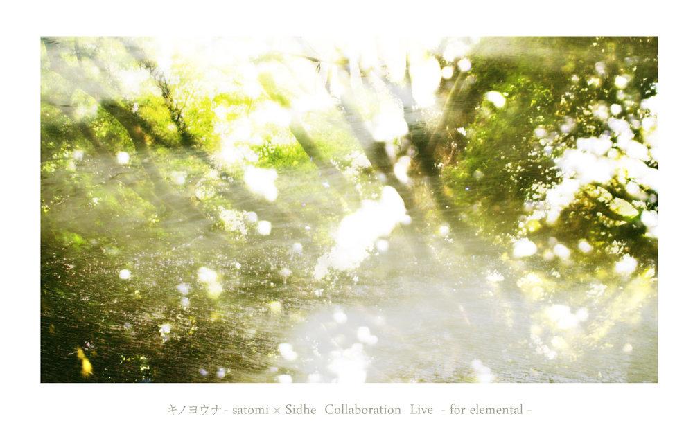 live001.jpg