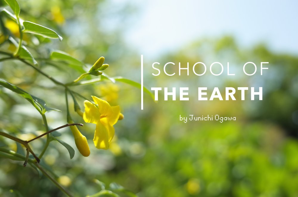 school of the earth.jpeg