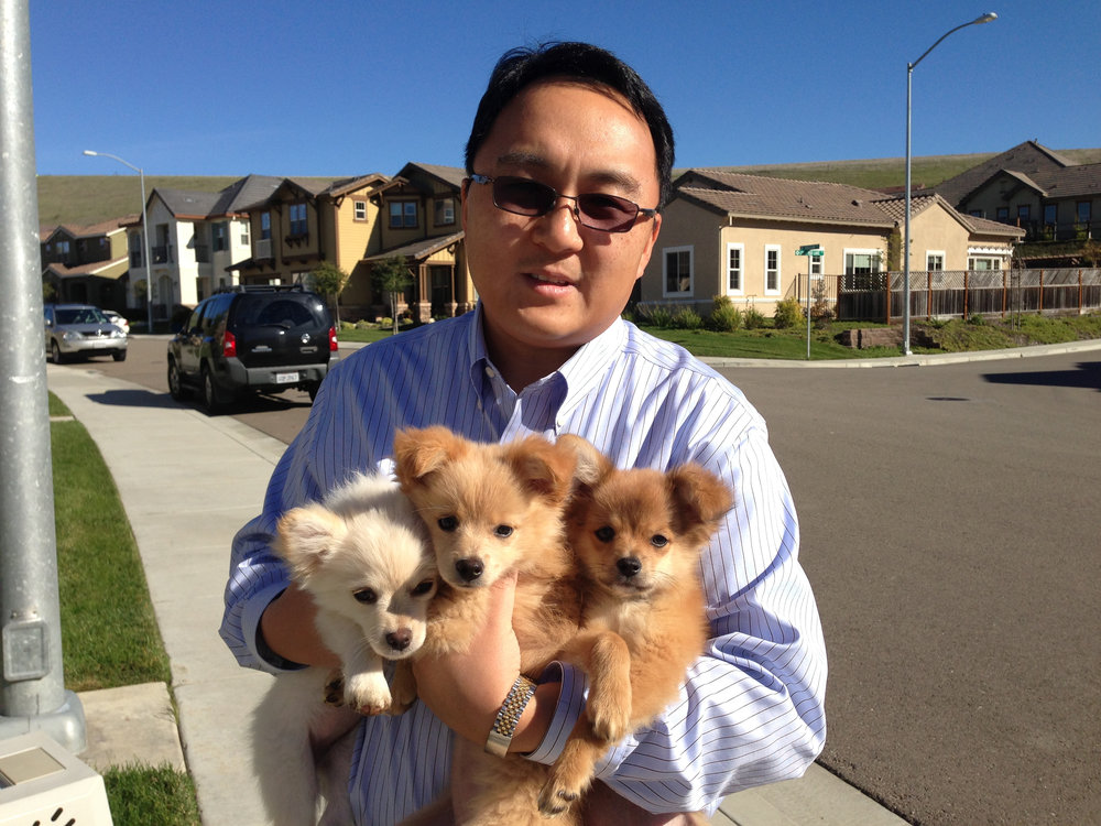 Harold and Puppies.jpg